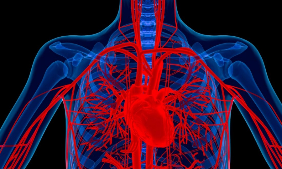 Arthritis drug could cure severe heart condition