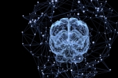Underdeveloped brain network after 30 may impact mental health