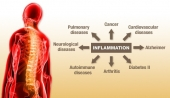 Ailing from chronic inflammation? Here is why