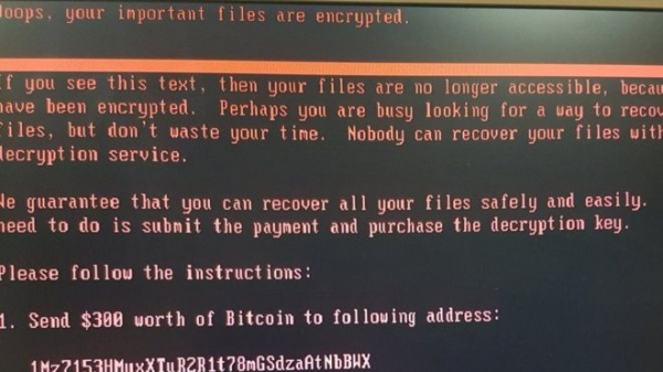 Ransomware 'here to stay', warns Google study