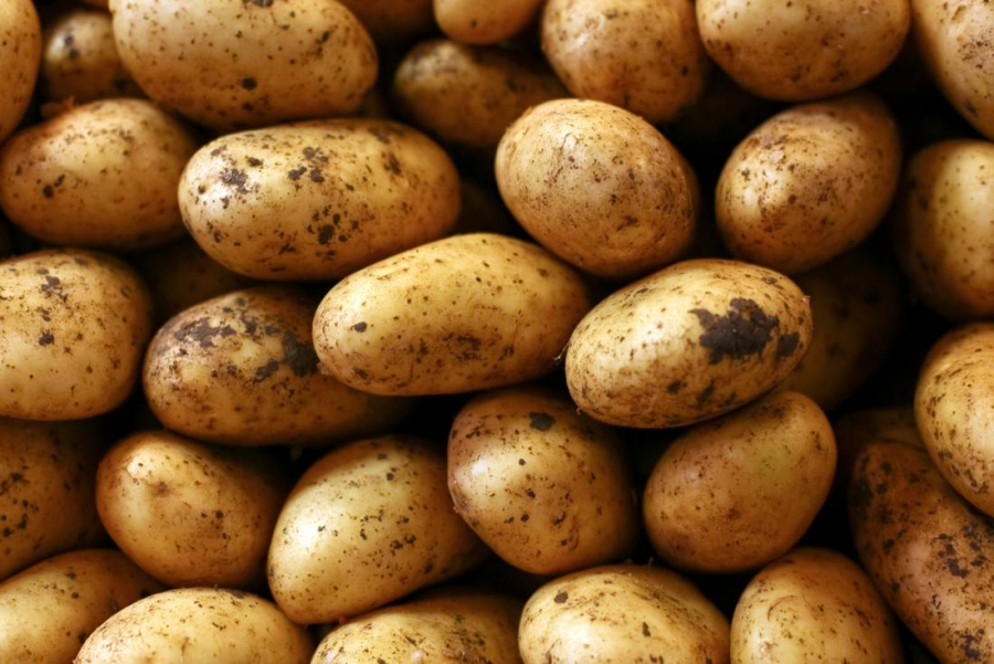 Potato allergy: Risk factors and symptoms